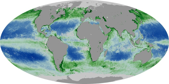 Global Map Chlorophyll Image 136