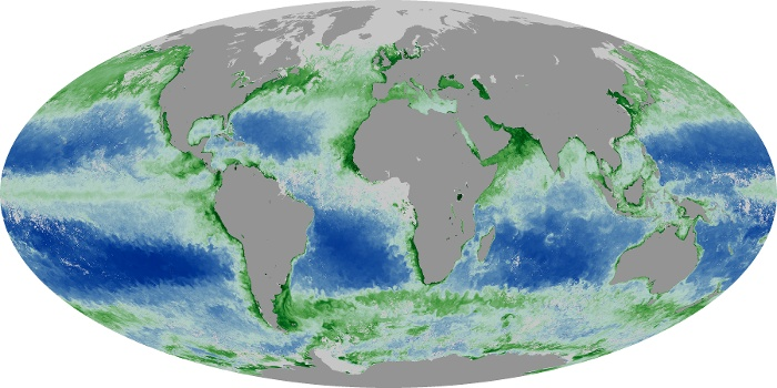 Global Map Chlorophyll Image 188