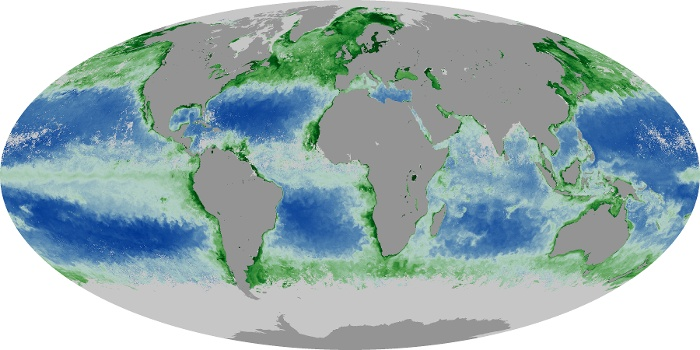 Global Map Chlorophyll Image 191