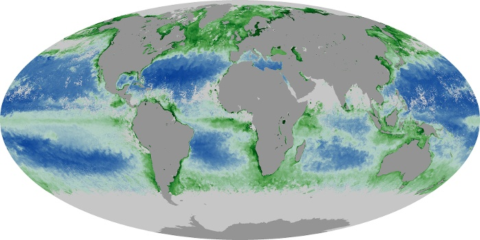 Global Map Chlorophyll Image 193