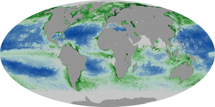 Global Map Chlorophyll Image 194