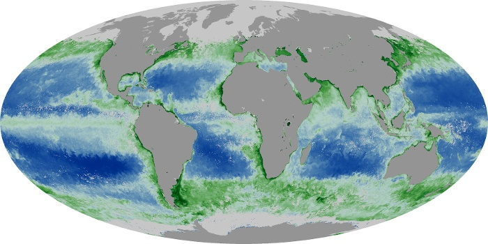 Global Map Chlorophyll Image 197