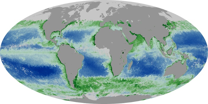 Global Map Chlorophyll Image 198