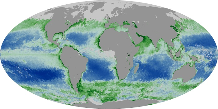 Global Map Chlorophyll Image 199