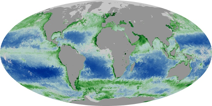 Global Map Chlorophyll Image 200