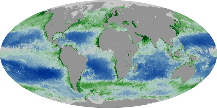 Global Map Chlorophyll Image 201