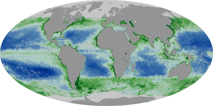 Global Map Chlorophyll Image 209