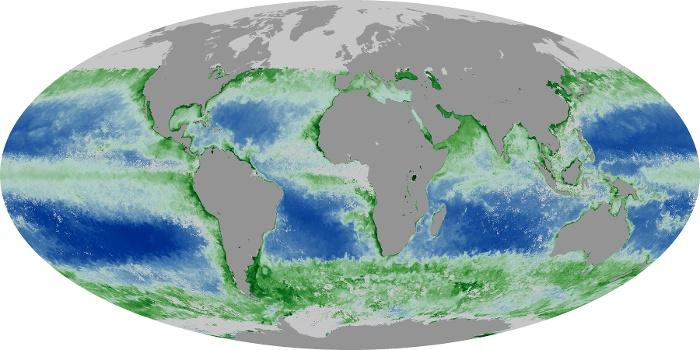 Global Map Chlorophyll Image 222