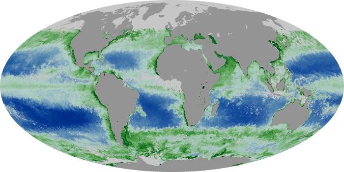 Global Map Chlorophyll Image 223