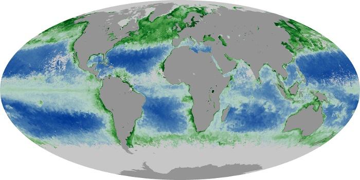 Global Map Chlorophyll Image 227