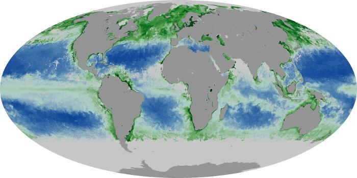 Global Map Chlorophyll Image 228