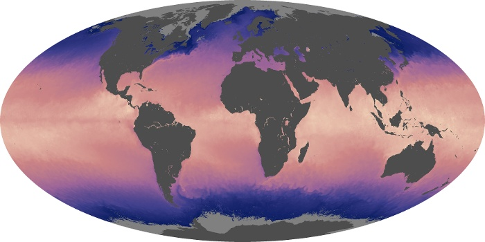 Global Map Sea Surface Temperature Image 130