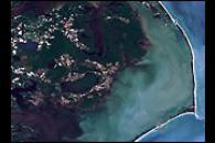 Hurricane Floyd Effects on Coastal Ecology