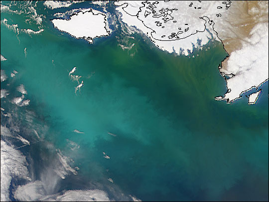New Coccolithophore Bloom in Bering Sea