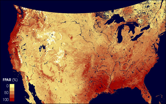 MODIS Measures Fraction of Sunlight Absorbed by Plants