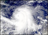 Typhoon Kirogi Spotted by SeaWiFS