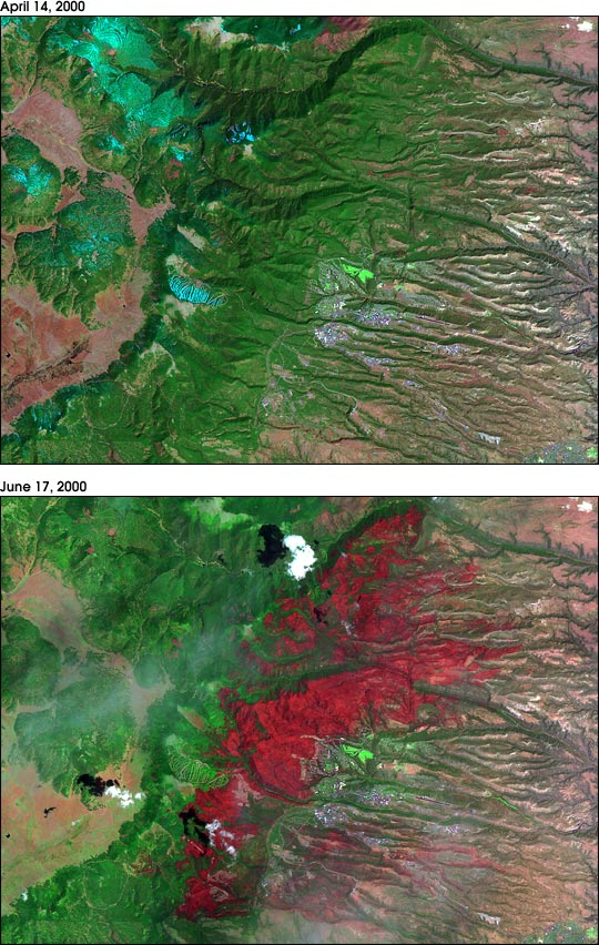 Los Alamos Before and After the Fire