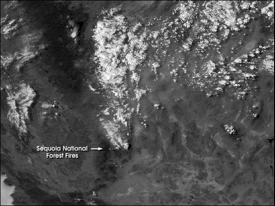 Animation of Sequoia Forest Fire