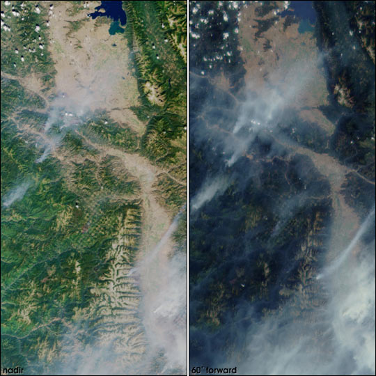 Two Perspectives on Forest Fire