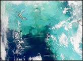 The Bering Sea