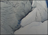 Iceberg Nursery