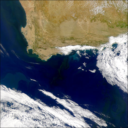 Phytoplankton Blooms Near the Cape of Good Hope