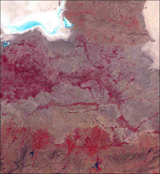Earthquake Region, India