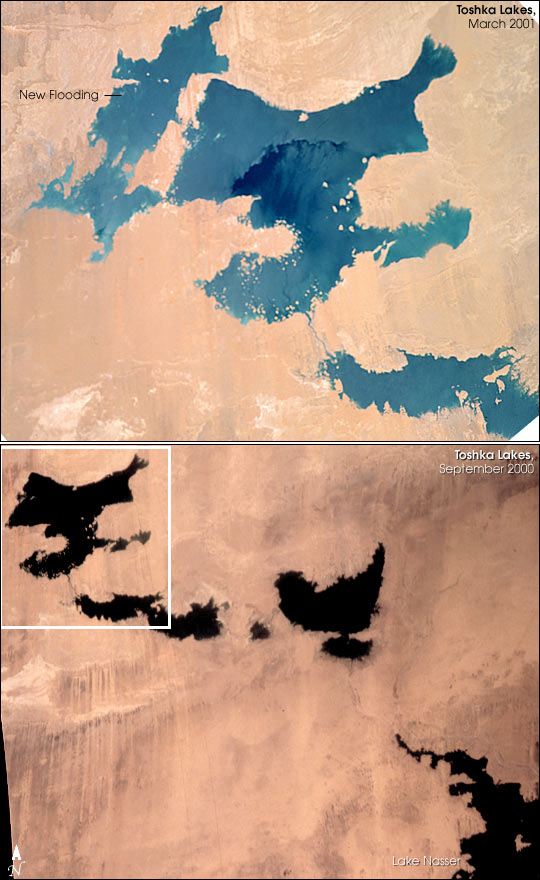 Another New Lake in Egypt - related image preview