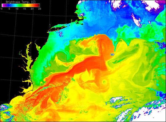Gulf Stream's Brightness Temperature