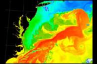 Gulf Stream's Brightness Temperature