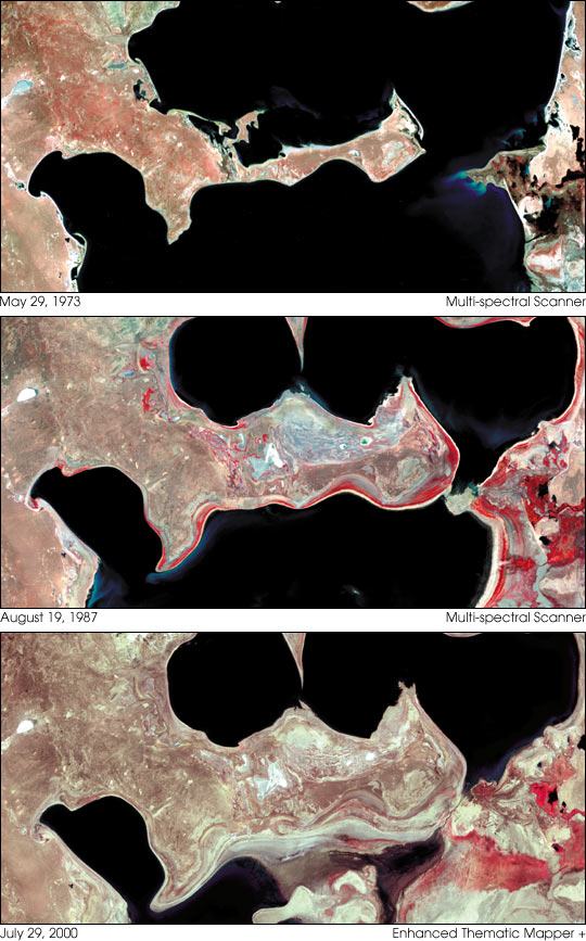 The Shrinking Aral Sea