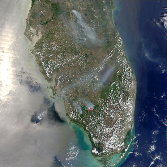 Scattered Fires in Florida