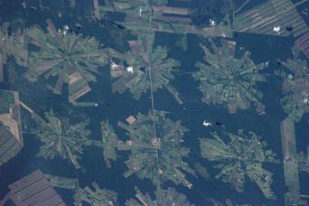 Tierras Bajas Deforestation, Bolivia - related image preview