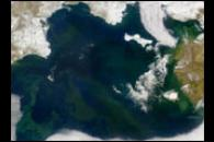 Mystery Plankton Bloom in the Bering Sea