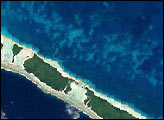 Coral Bleaching in French Polynesia