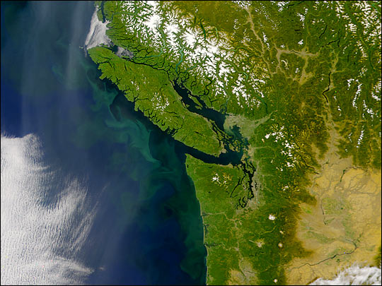 Phytoplankton, Haze, and Forests in the Pacific Northwest