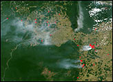 Deforestation and fires in Para, Brazil