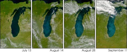 Whiting in Lake Michigan