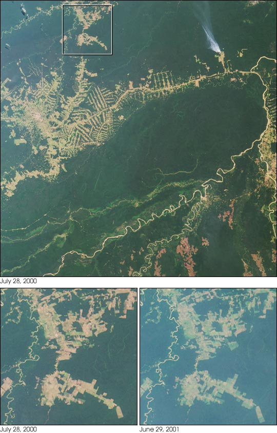 Deforestation near Rio Branco, Brazil