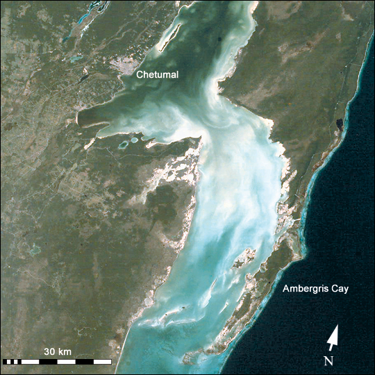 Chetumal Bay Coral Reef - related image preview