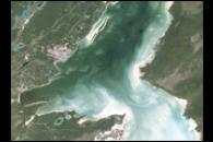 Chetumal Bay Coral Reef
