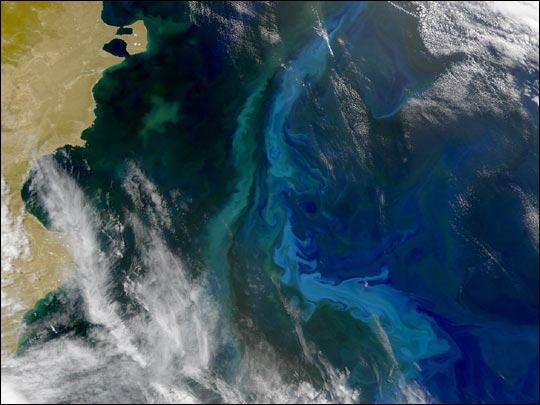 Convergence Zone over the Patagonian Shelf
