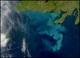 Bright Water Off Newfoundland - selected image