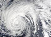 Typhoon Ele
