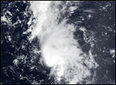 Tropical Storm Dolly off the Leeward Islands