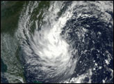 Tropical Storm Gustav - selected image