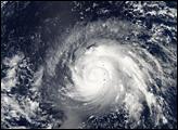 Typhoon Higos - selected image