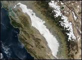 Dense Fog in Central California