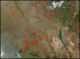 Fires in Eastern Africa Near Lake Victoria