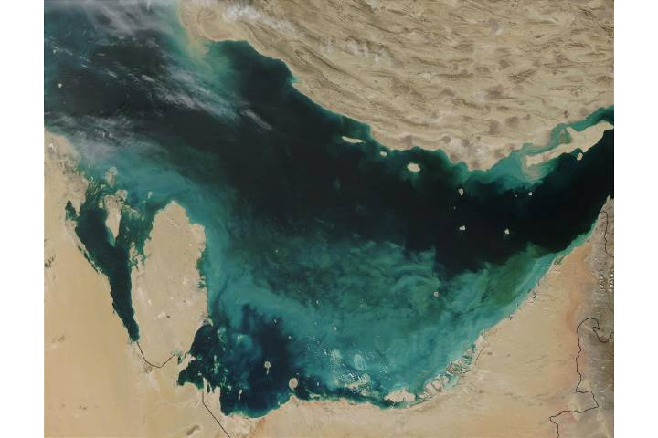 Sediment in the southern Persian Gulf - selected image